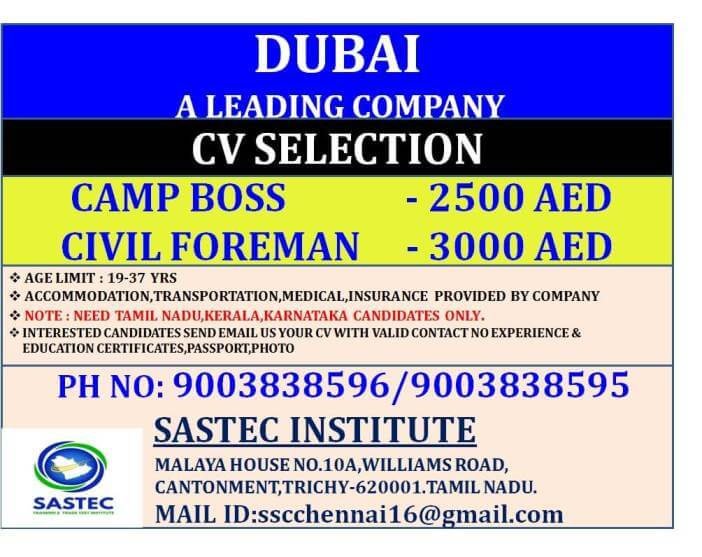 assignment-abroad-times